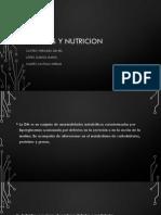 Diabetes y Nutricion