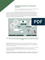 Las Causas de La Contaminación Atmosférica y Los Contaminantes Atmosféricos Más Importantes