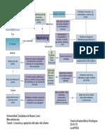 Mapa Conceptual. Creación y Captación Del Valor Del Cliente. Yessica Alvizo