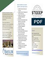 SGI Brochure