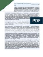 El Enfoque Psicoanalítico de La Patología Psicosomática