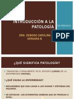 INTRODUCCION A LA PATOLOGIA EN ODONTOLOGIA