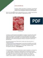 Anemia Falciform1