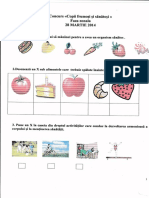 IMG_FISE MICII SAN.pdf