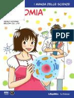 Manga 12 Anatomia
