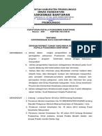 27.Sk Kapus Ttg Ketersediaan Data Dan Informasi
