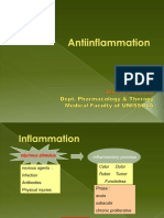 Antiinflamasi-Atina.pdf