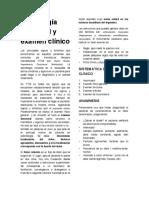 Semiologia y Examen Funcional en Oclusion 2012