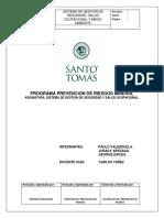 Programa Prevencion de Riesgos Mineria