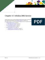 1_Infoblox DNS Overview