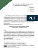 BIOLIXIVIAÇÃO DE MINÉRIOS DE COBRE EM REATORES COM ACIDITHIOBACILLUS FERROOXIDANS