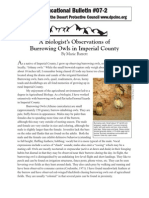 Educational Bulletin 07-2 A Biologist's Observations of Burrowing Owls in Imperial County by Marie Barrett