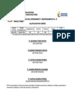 Calificacion Por Comite (1)