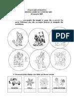 Evaluaresumativa Educ.limbajului28ianuarie2009