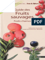 Guide Des Fruits Sauvages _ Fruits Charnus