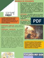 BASES PSICOLOGICAS DEL PENSAMIENTO EXPOSICION DIANA.pptx