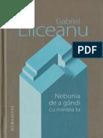 Gabriel Liiceanu-Nebunia de a Gândi Cu Mintea Ta (2016)