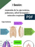 Fisioterapia Respiratoria.pdf
