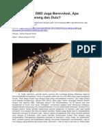Virus Dengue DBD Juga Berevolusi