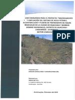 ESTUDIO GEOLOGICO CABRACANCHA