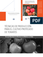 Fertiriego en Tomate 4
