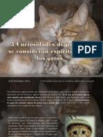 Carlos Erik Malpica Flores - 5 Curiosidades de por qué se consideran espirituales a los gatos