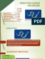 Nematoda Darah (Filariasis)