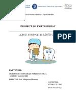 Proiect de Parteneriat Gradi - Stomatolog