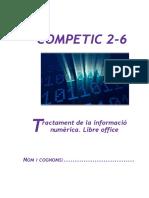 COMPETIC 2 C6.pdf