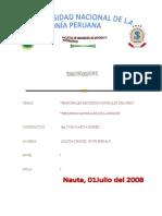 Principales Recursos Naturales Renovables y no Renovables Del Peru y Sus Regiones.docx