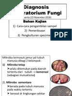 Diagnosis Laboratorium Fungi