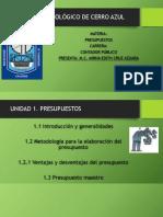 296882101-Gestion-y-Toma-de-Decisiones-Unidad-1-Presupuesto.pptx