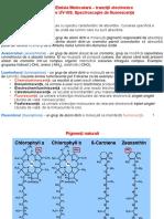 2 Pigmenti Fluorescenta Chemoluminiscenta