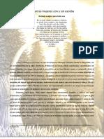 Camino de brujas.pdf