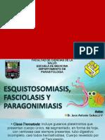 Esquistosomiasis, Fasciolasis y Paragonimiasis