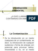 contaminacionambientall-130930192547-phpapp02.pdf