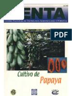 Papaya maradol pdf cultivo de