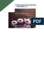 Dye Penetrant Inspection Report