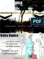 Levantamiento Objetual Cupica D.I. Sep-2010