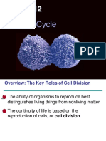 12_CellCycle.ppt