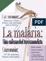200700010 Malaria Trabajo
