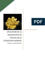 Ejemplos de Aplicaciones de Microscopia de Mineral