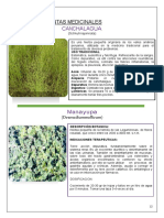 plantas-nativas-huancavelica