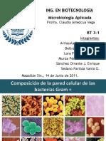 68908670-Bacterias-Gram-Positivas.pptx