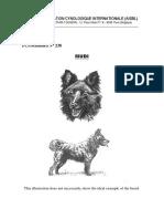 Mudi - FCI standard