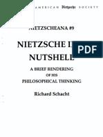 Nietzsche in a nutshele