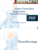 322560659 Aula 5 Neuropsicologia Laudo Neuropsicologico (1)