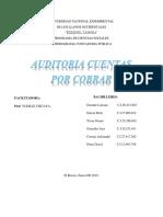 Auditoria Cuentas Por Cobrar