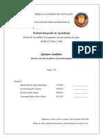 ppa3-234-equipo6.pdf