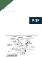 graficas de yac..docx
